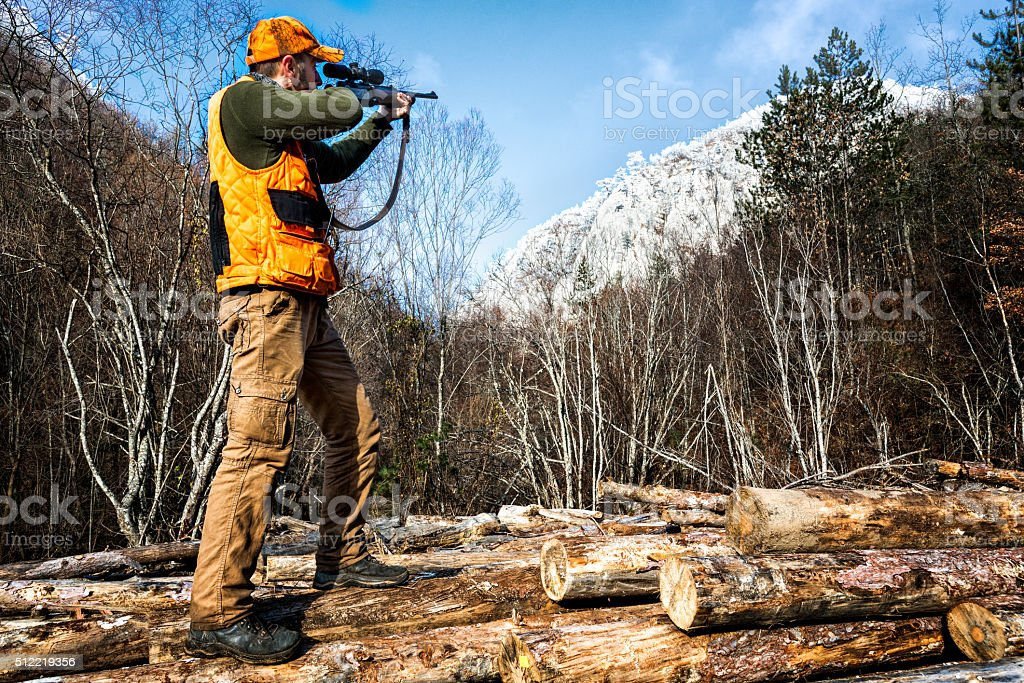Rifle huntung in the forest stock photo