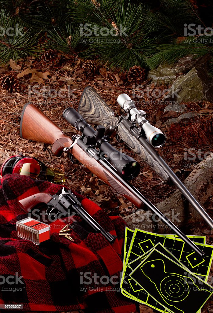 Rifles With Targets royalty-free stock photo