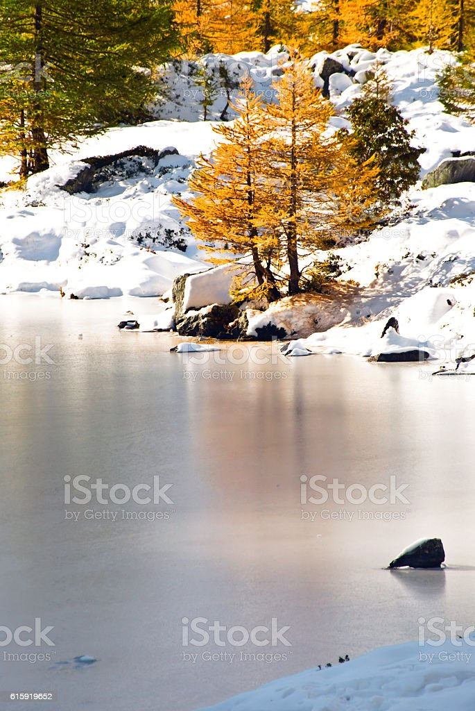 riflessi sul ghiaccio stock photo