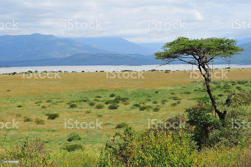 Rift Valley in Ethiopia's Nechisar National Park stock photo