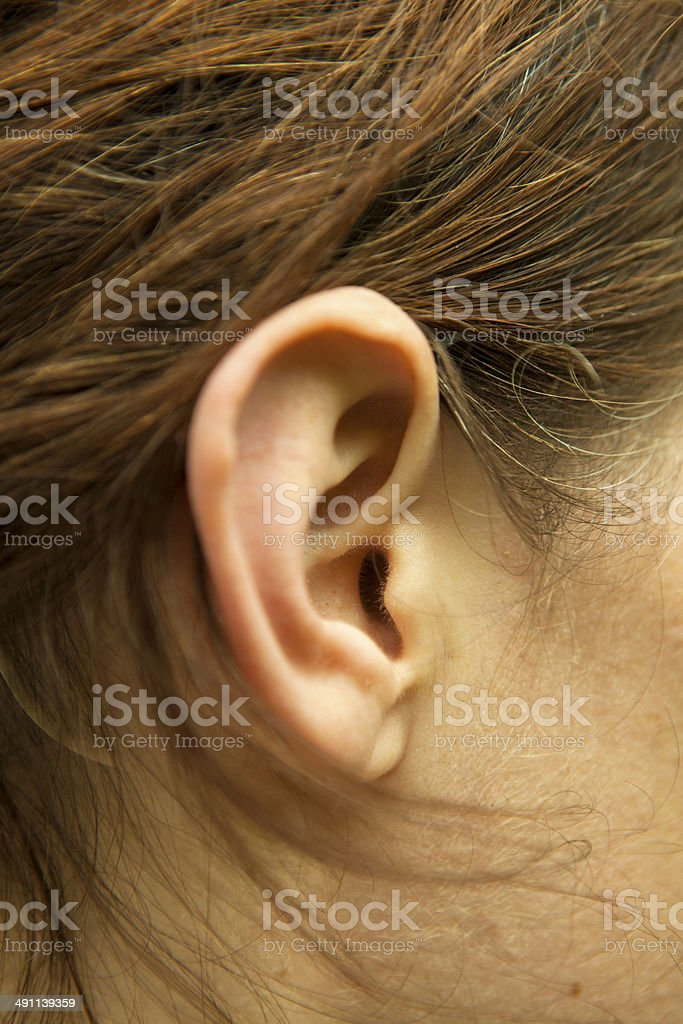 Right ear of  woman stock photo