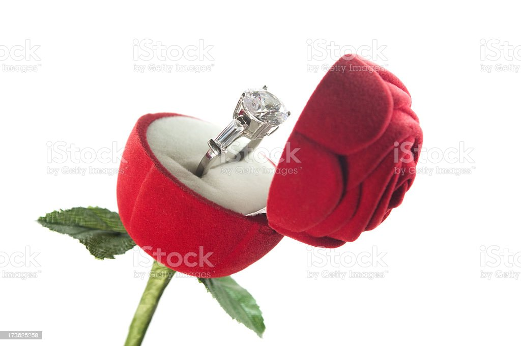 Ring And Rose stock photo
