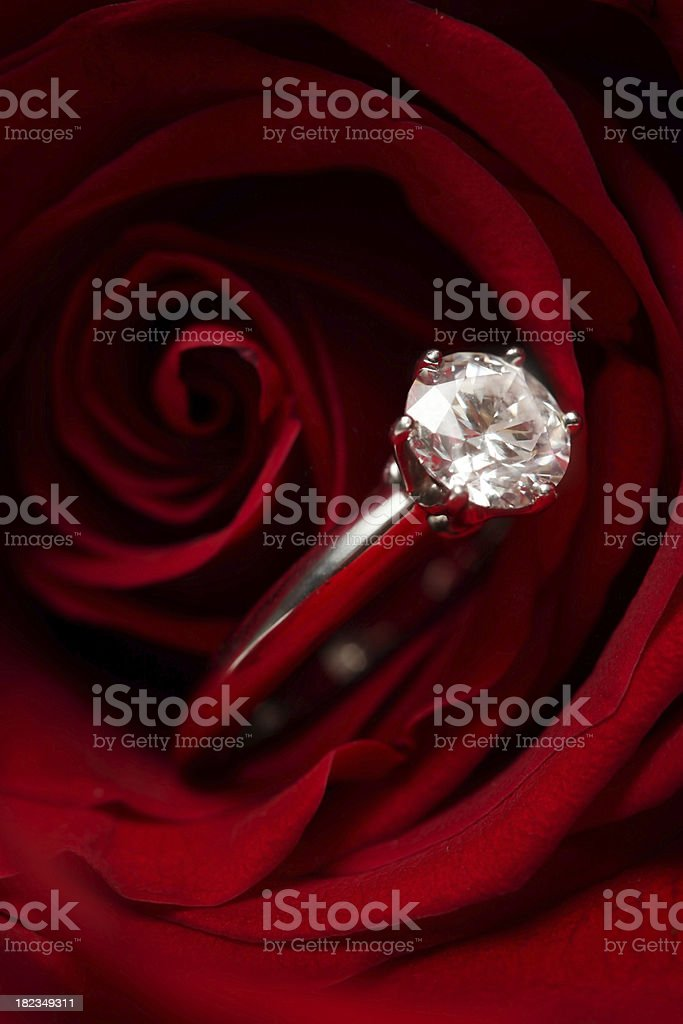 Ring and rose royalty-free stock photo