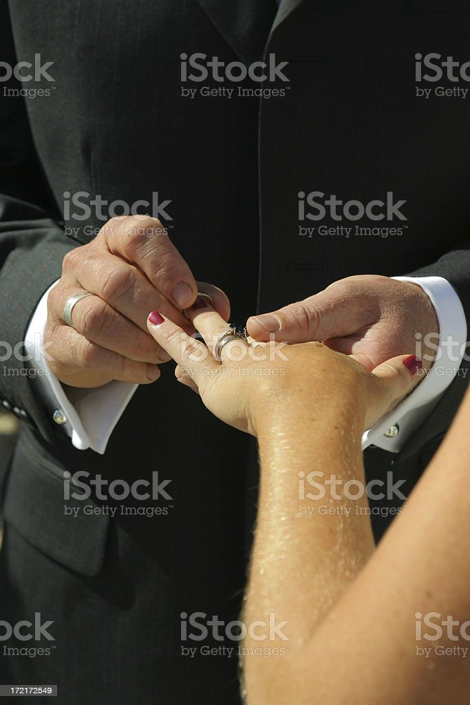 Ring Fingers royalty-free stock photo