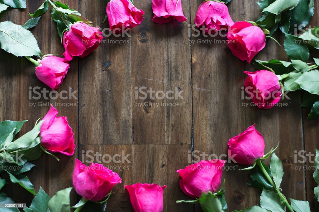 Ring of pink Roses stock photo