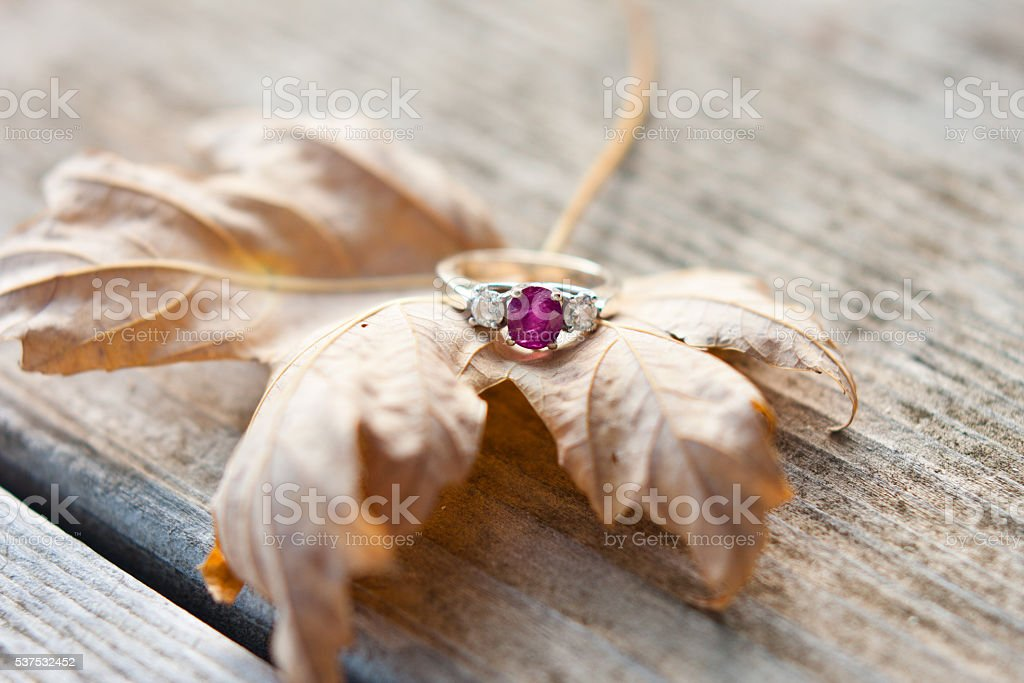 Ring on Leaf stock photo