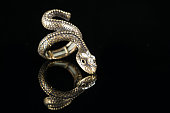 ring with stones in the form of snake on black