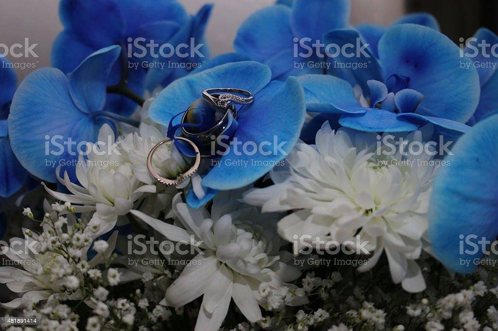 Anillos de flores foto de stock libre de derechos