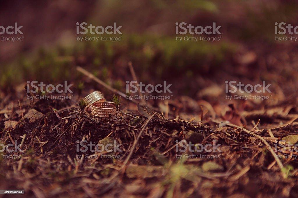 Ringe Lizenzfreies stock-foto