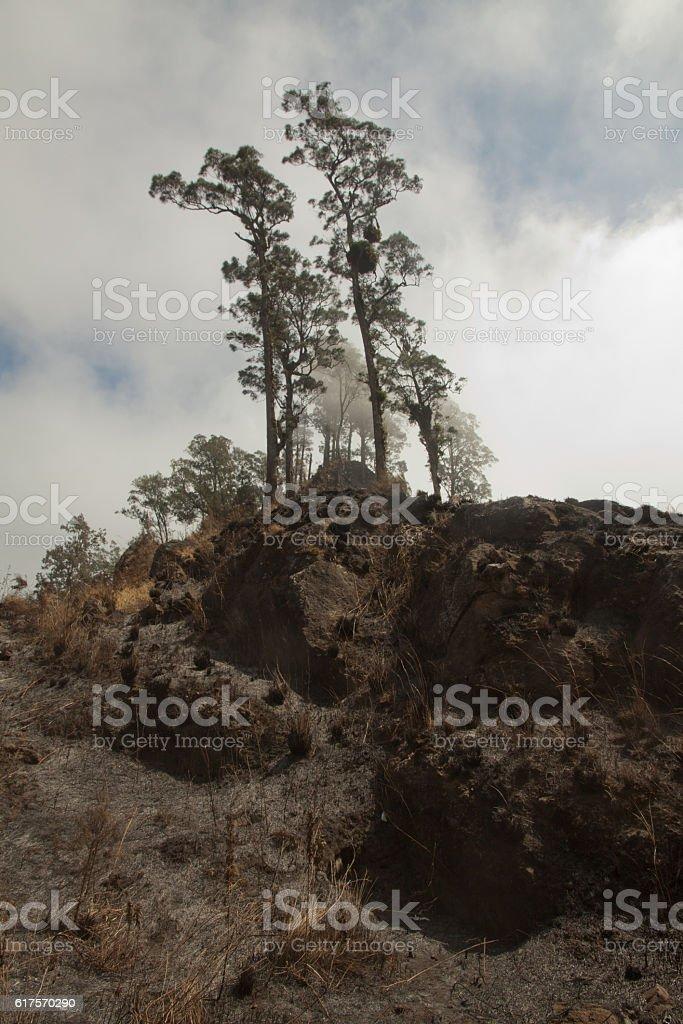 Rinjani volcano mountain burned land, Lombok Indonesia stock photo