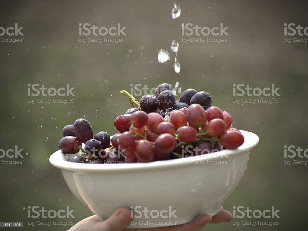 Rinsed Grapes royalty-free stock photo