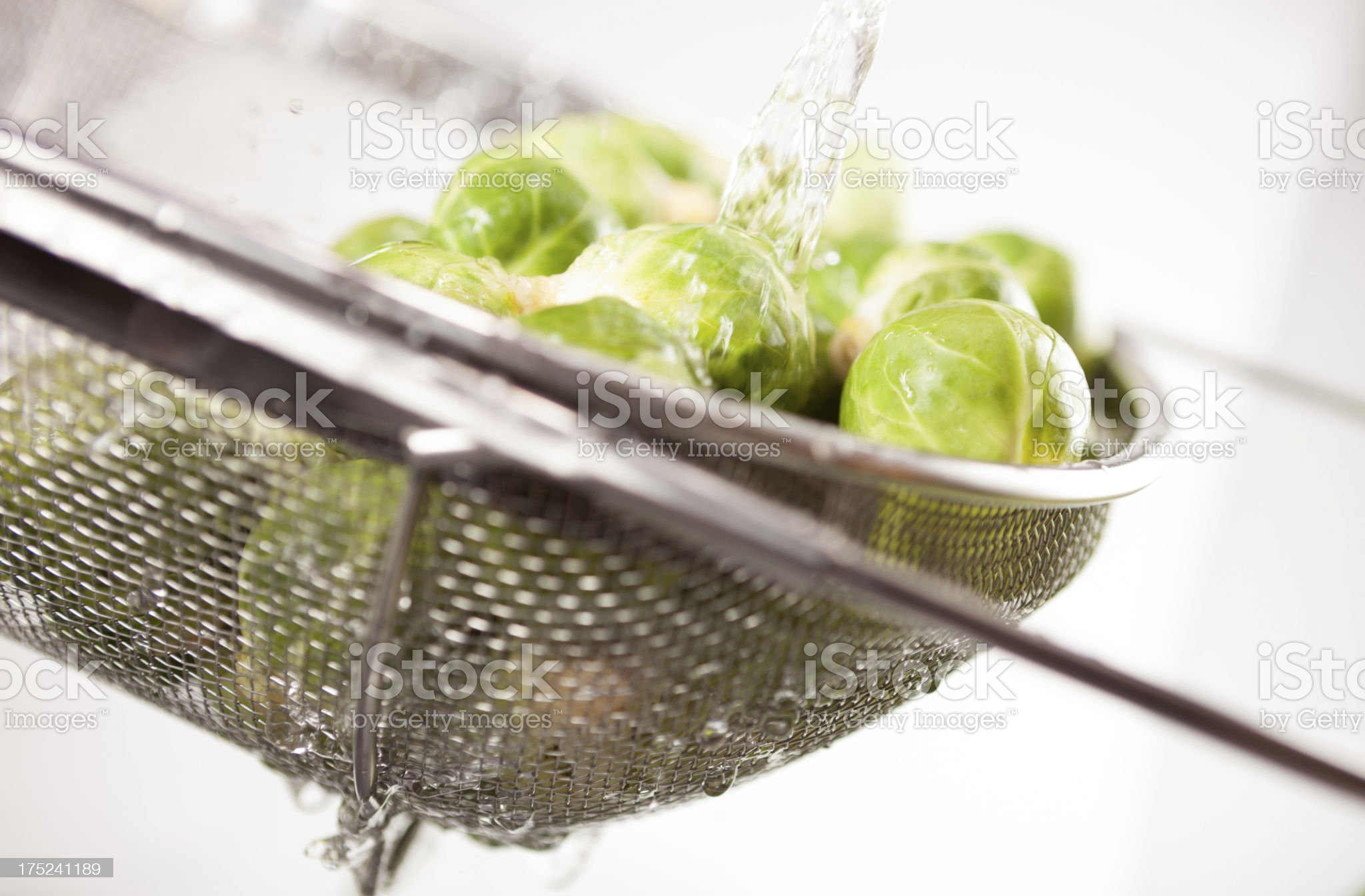 Rinsing Brussels Sprouts royalty-free stock photo