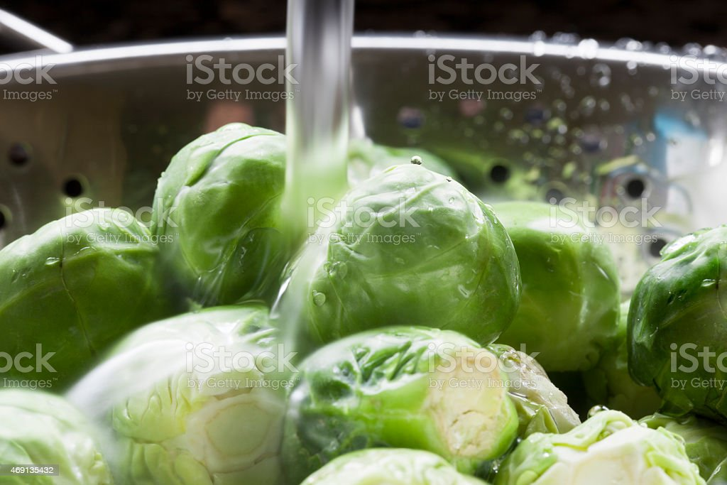 Rinsing Sprouts stock photo
