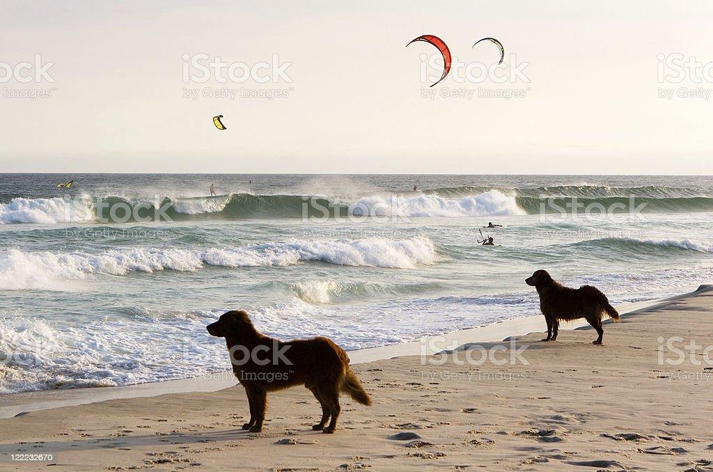 Rio de Janeiro, Kite Surf royalty-free stock photo