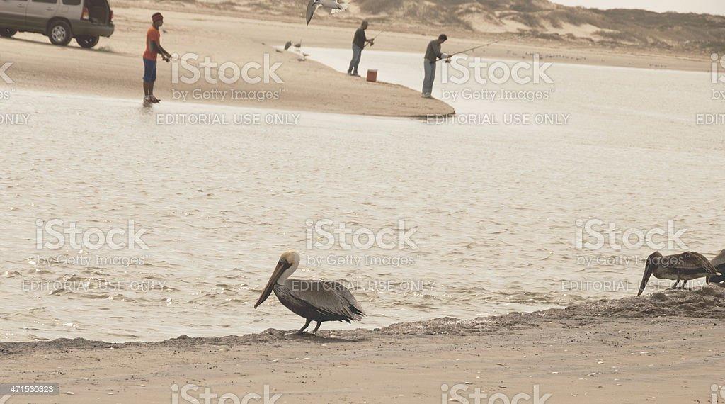 Rio Grande at Gulf of Mexico stock photo