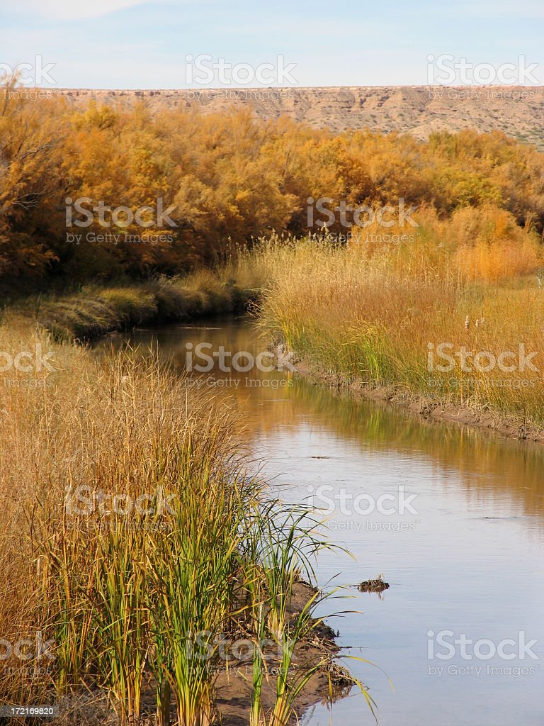 Rio Grande Irrigation Ditch royalty-free stock photo