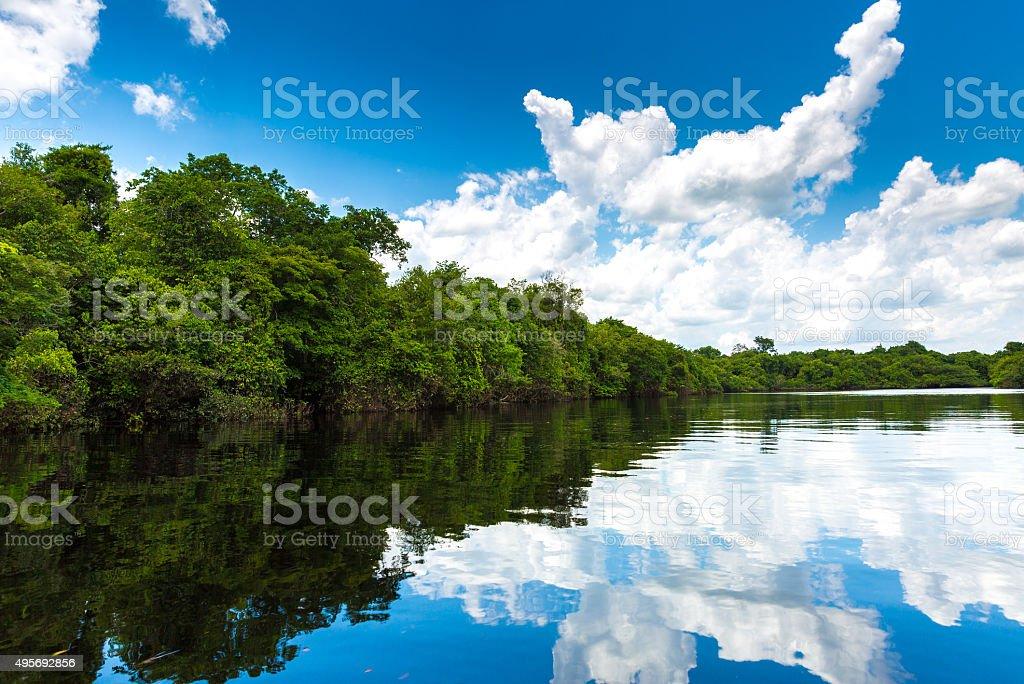Rio Negro river in Amazon, Brazil stock photo