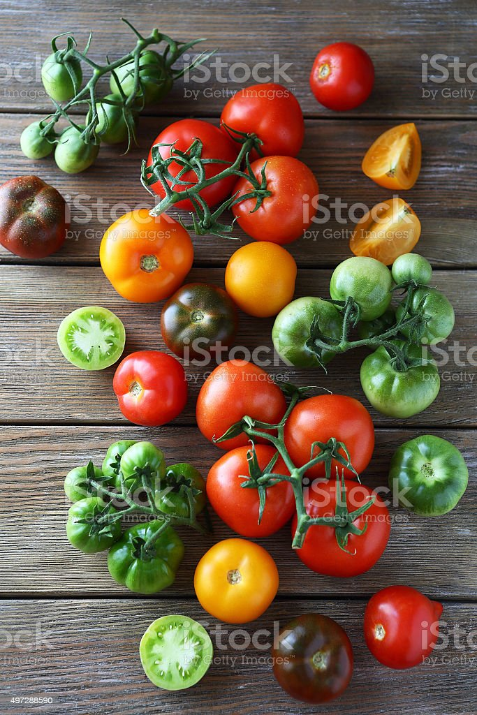 ripe and green tomatoes stock photo