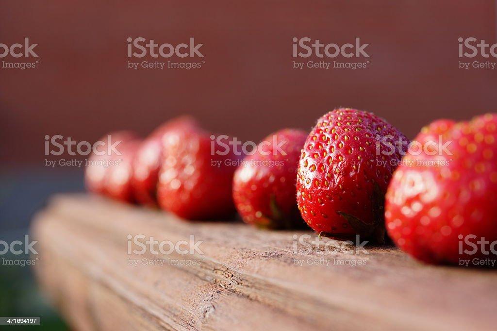 Ripe and juicy strawberries stock photo