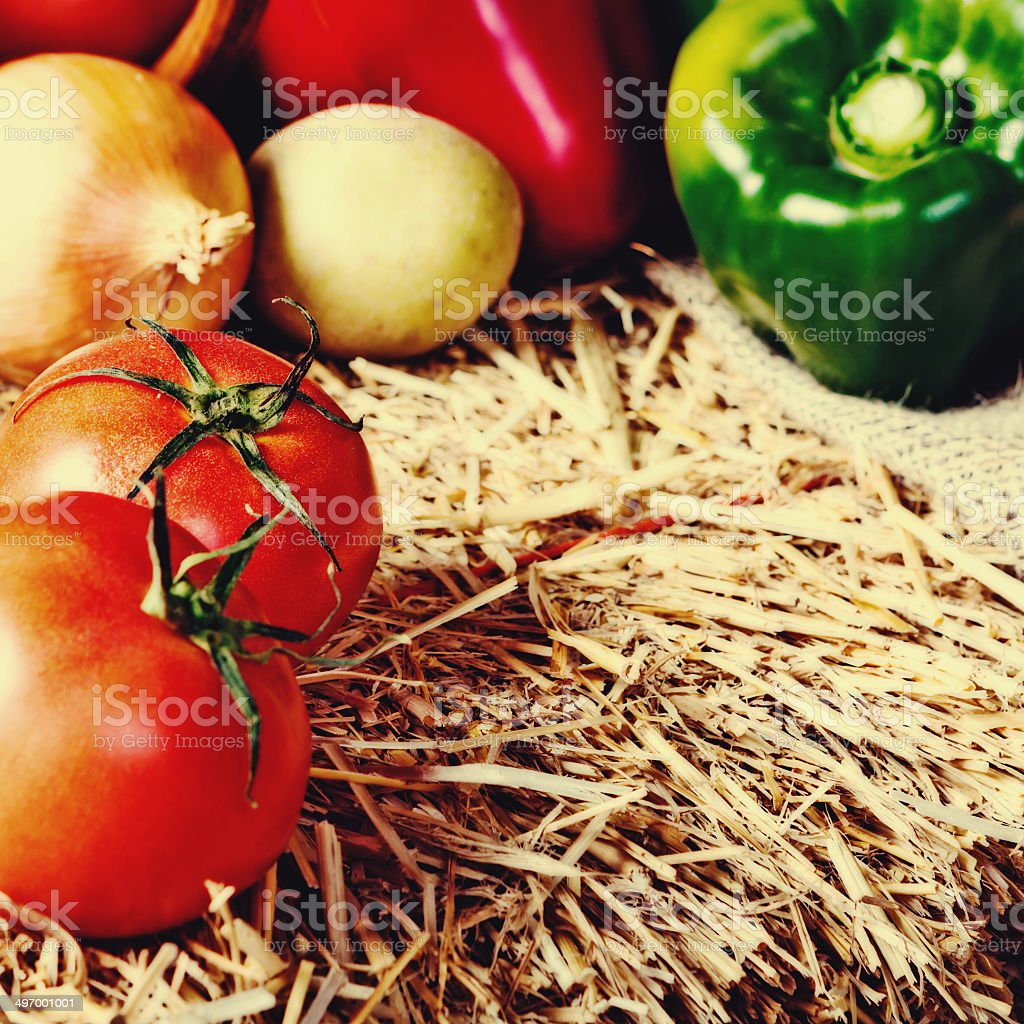 Ripe and ready to eat; fresh vegetables at farmers market royalty-free stock photo