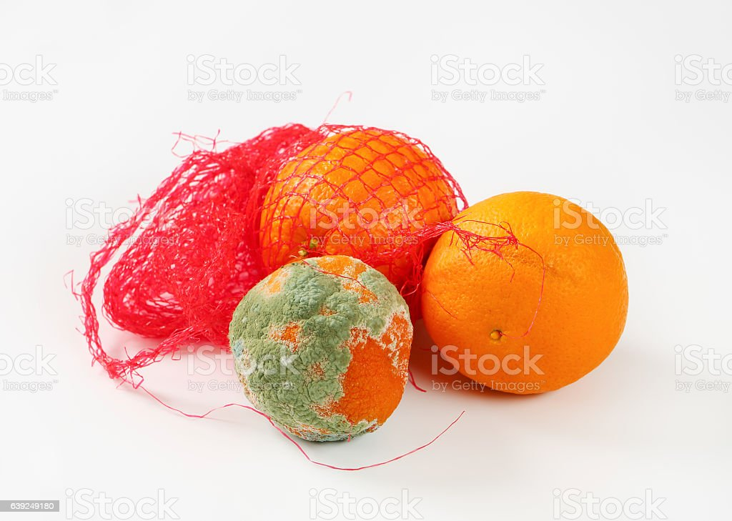 ripe and rotten oranges stock photo