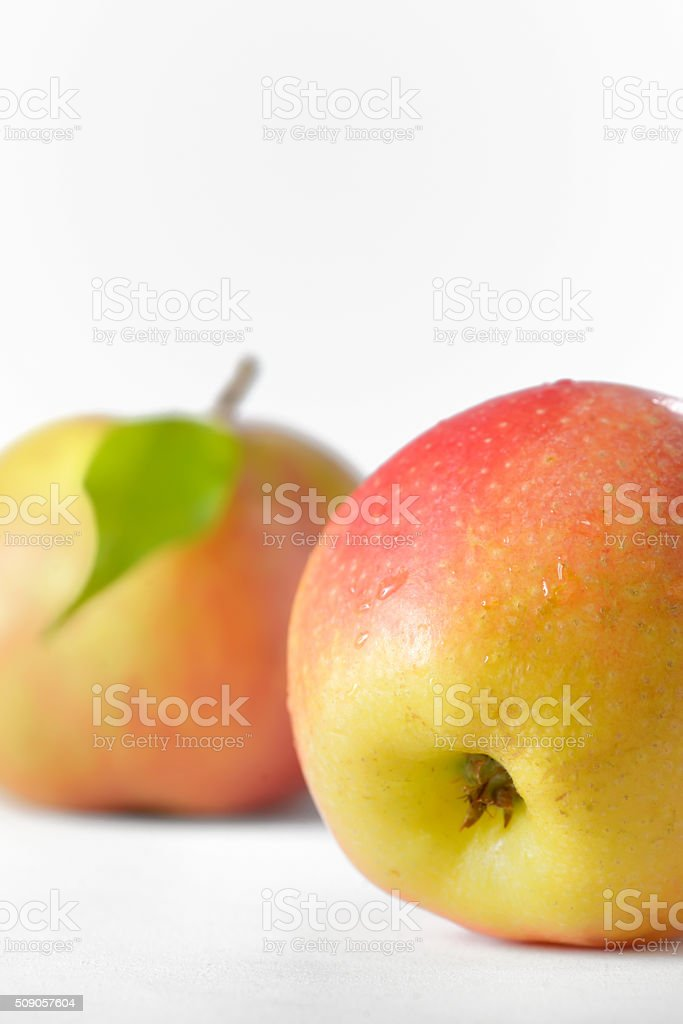 Ripe apples fruit with leaves stock photo