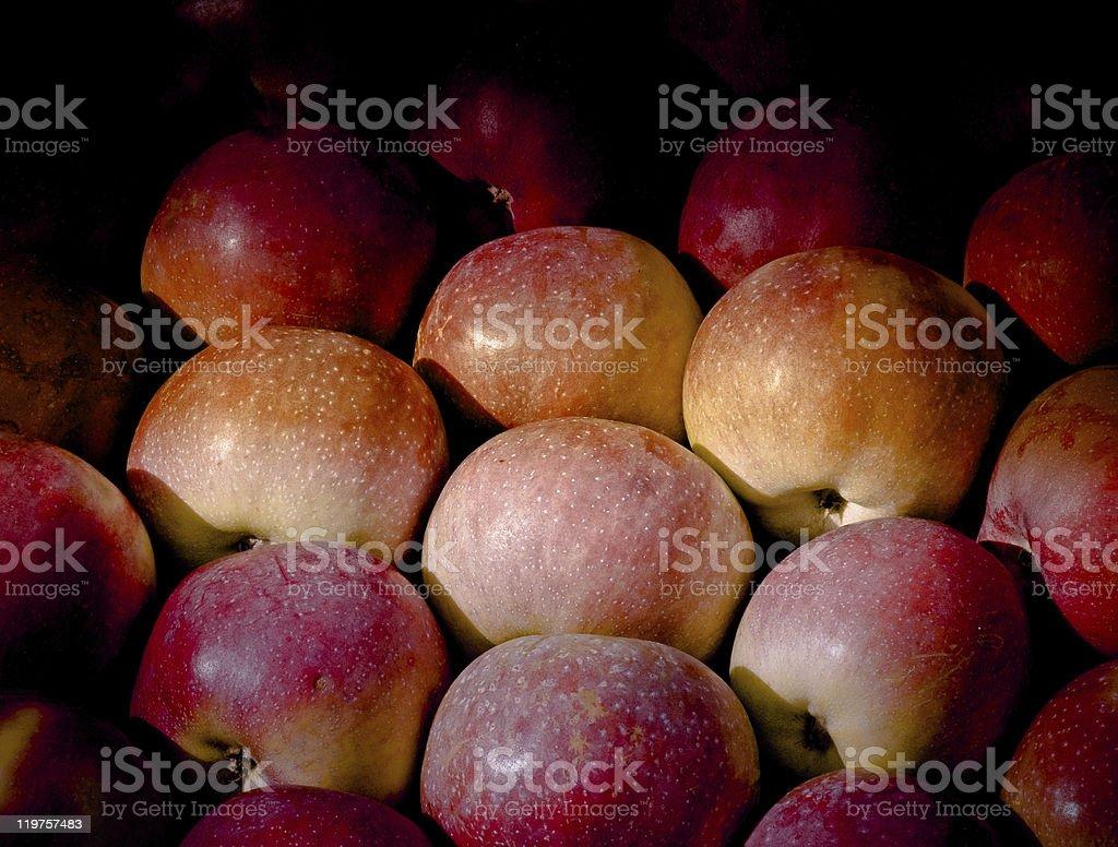 Reife Äpfel dezent beleuchteten Lizenzfreies stock-foto