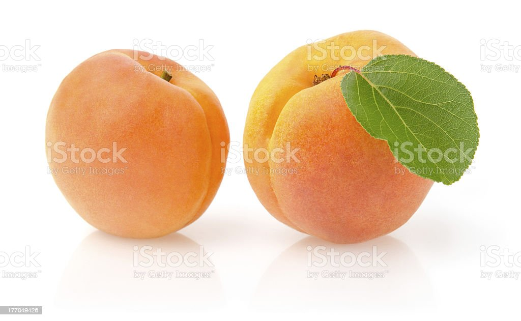 Ripe Apricots with Leaf royalty-free stock photo