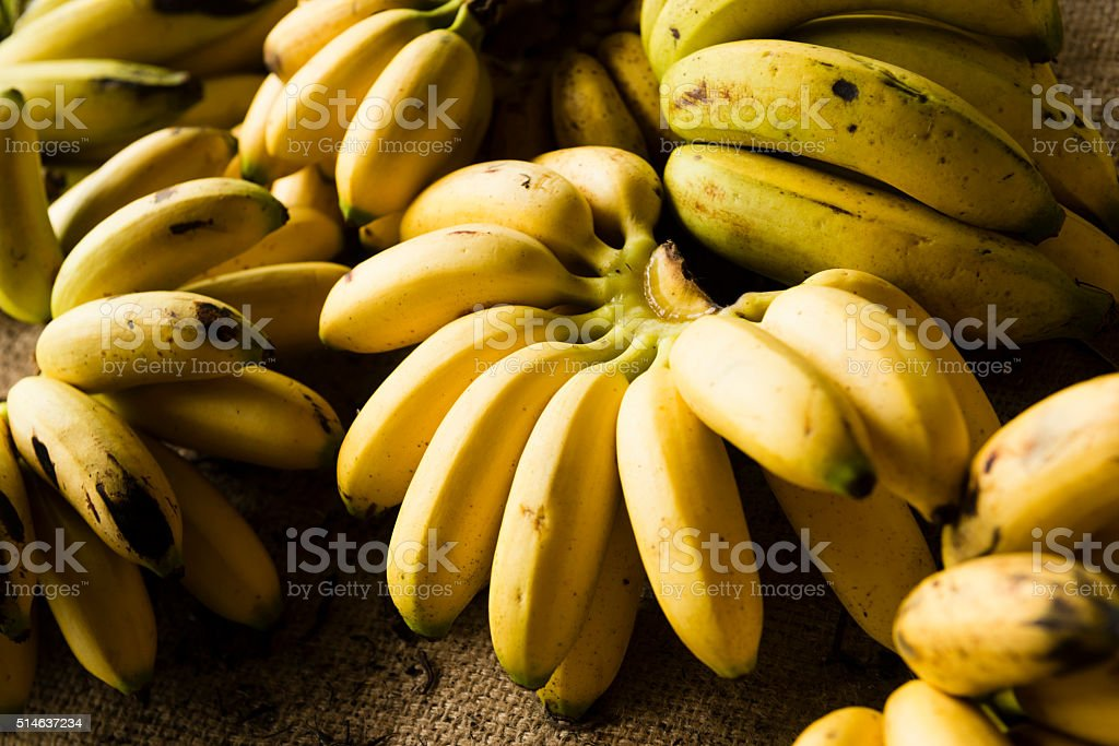 Ripe Bananas For Sale in Costa Rica Market Central America stock photo