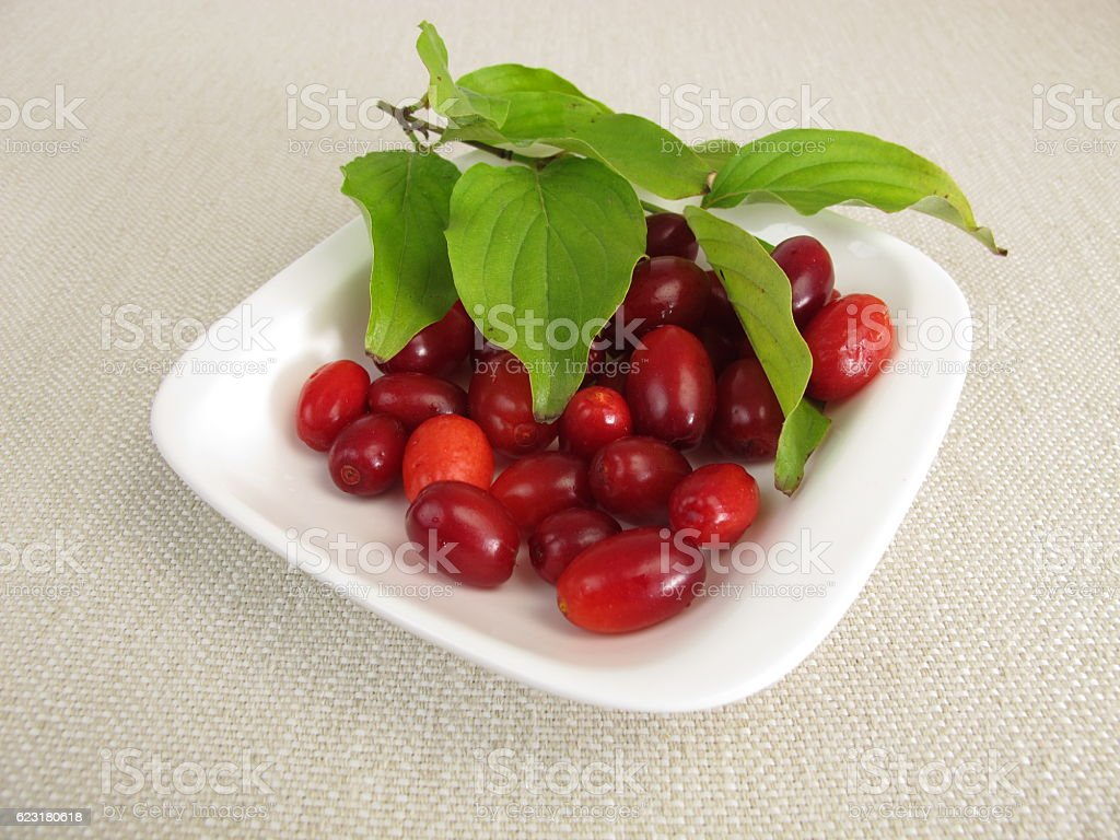 Ripe cornelian cherries stock photo