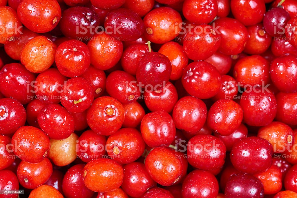 Ripe cornelian cherry (Cornus mas). Fruit background stock photo