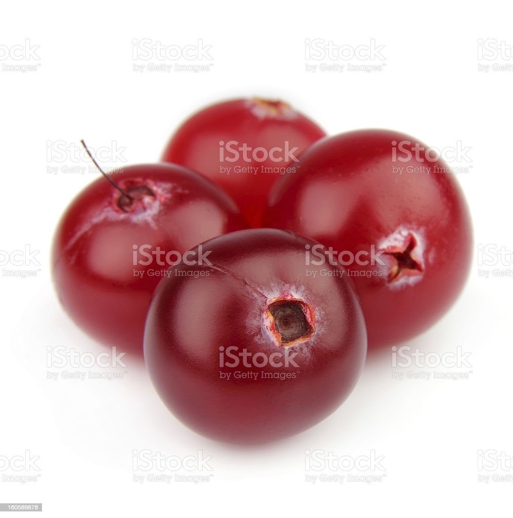 Ripe cranberry royalty-free stock photo