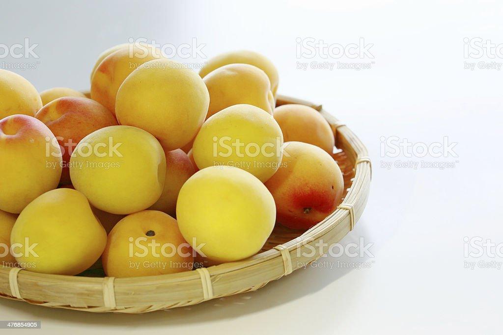 Ripe fruits of Ume royalty-free stock photo