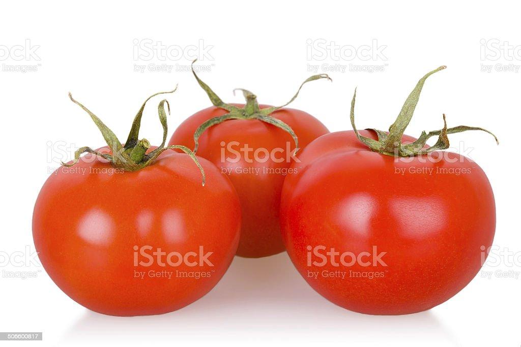 Tomates maduros isolado foto royalty-free