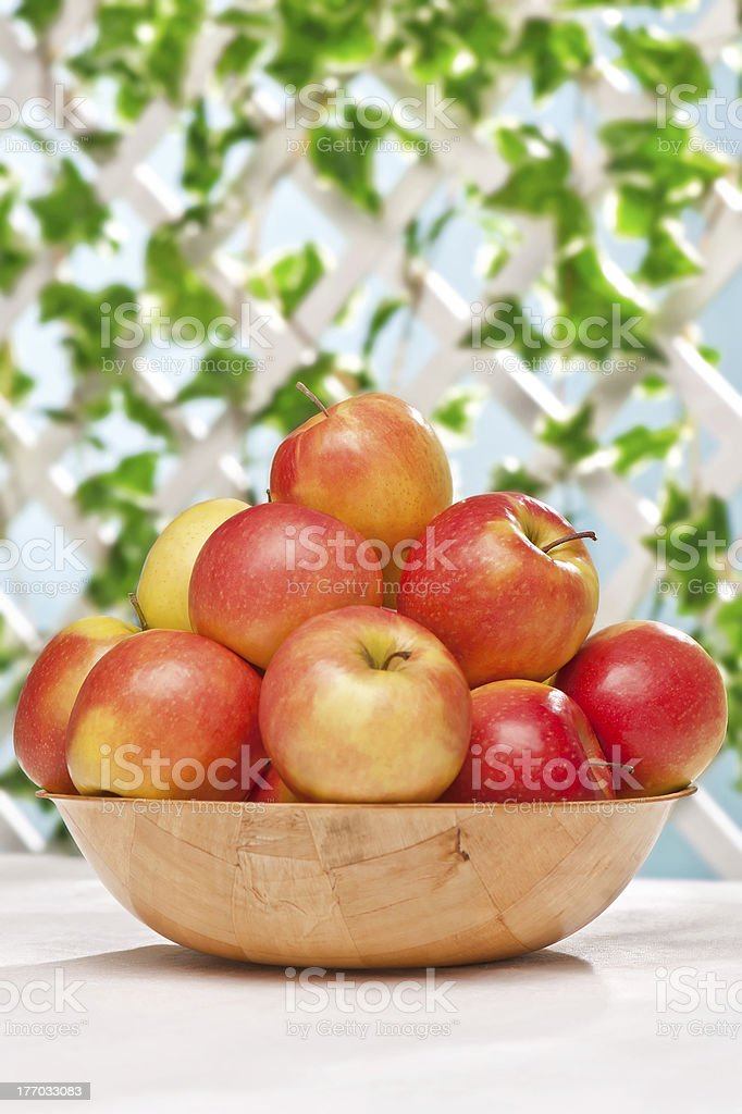 Ripe juicy apples on the table royalty-free stock photo
