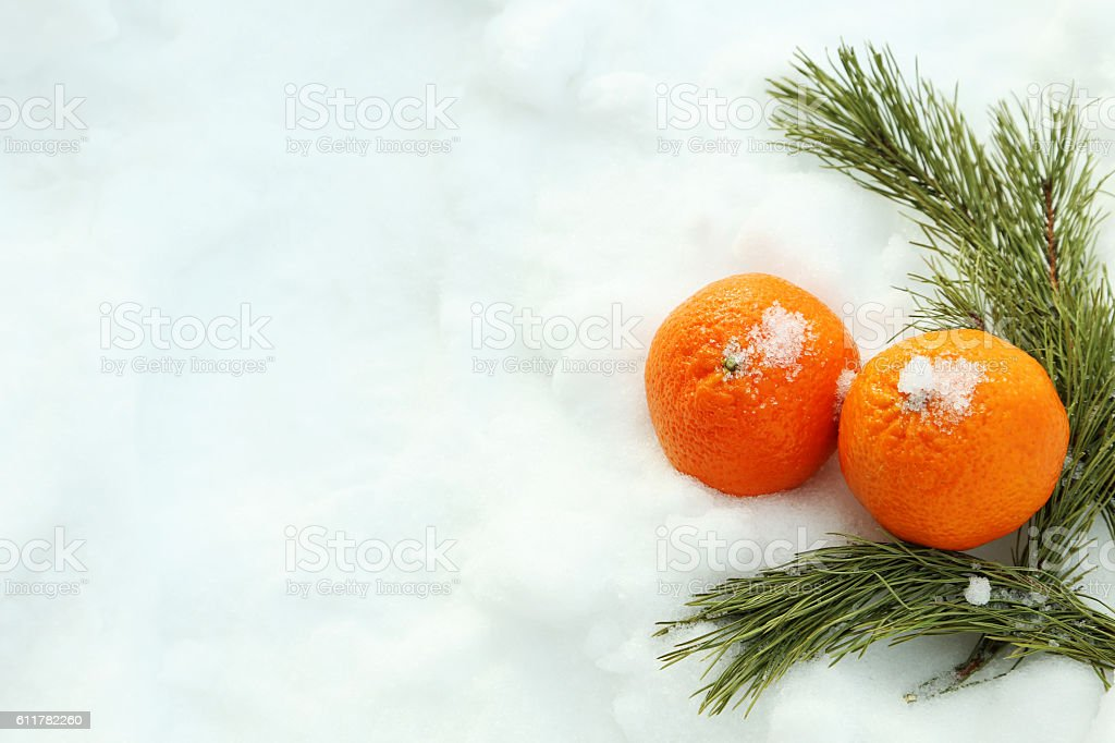 Ripe mandarins with fir-tree branch on the white snow stock photo