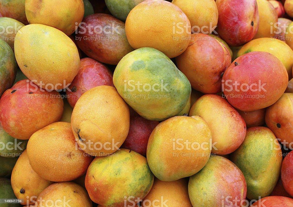 ripe mango fruit stock photo