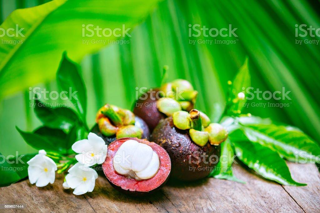Ripe mangosteens stock photo