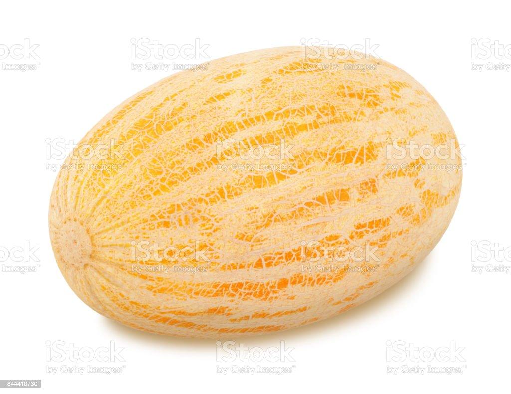 Ripe melon on a white background stock photo