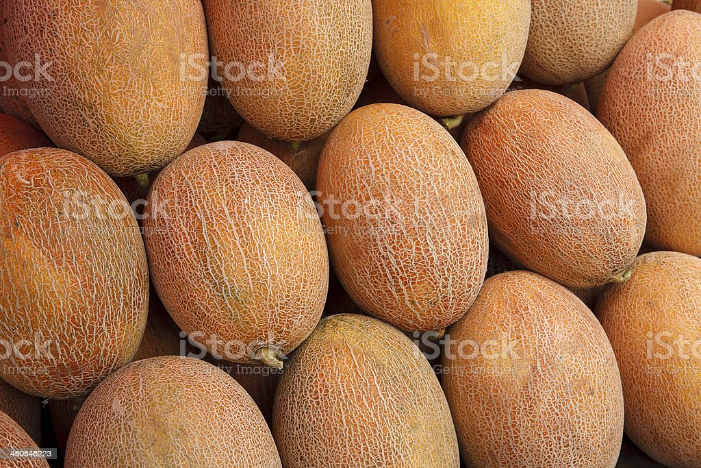 Ripe melons stock photo