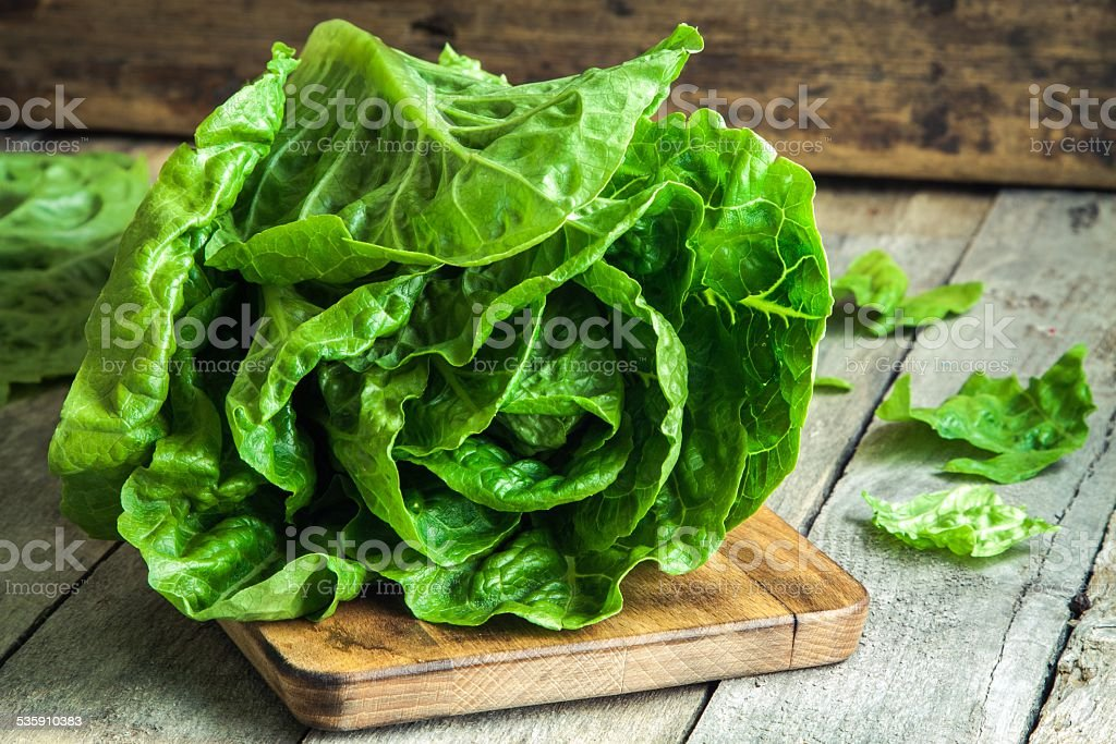 ripe organic green salad Romano stock photo