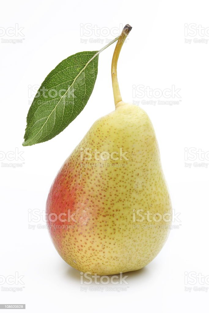 A ripe pear with a leaf attached on a white background stock photo