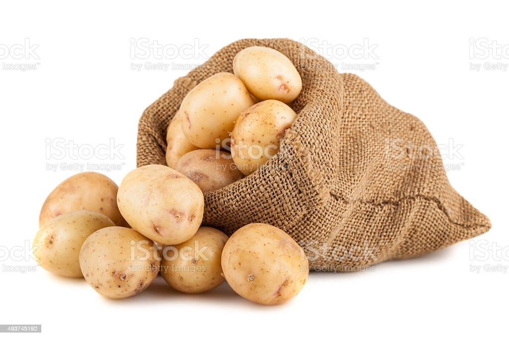Ripe potato in burlap sack stock photo