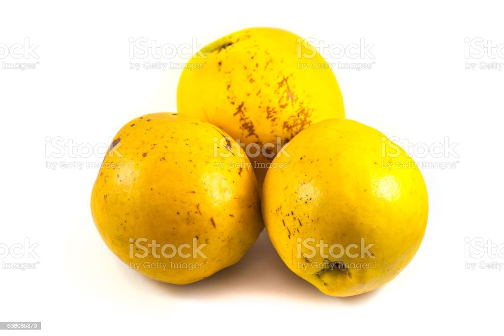 Ripe quinces isolated on white stock photo