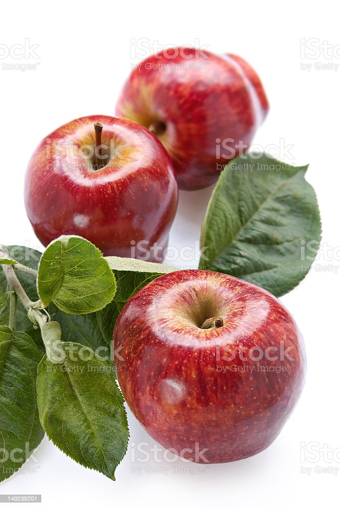 Ripe red apples royalty-free stock photo