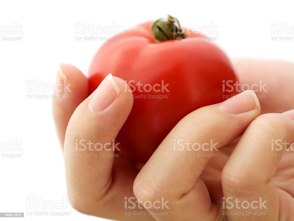 Ripe red tomato in woman's hand royalty-free stock photo