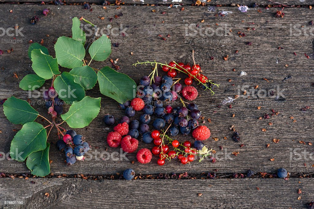 Ripe shadberry, redcurrant, raspberry with branch and leaves scattered on stock photo