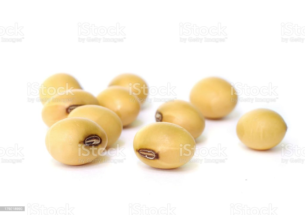 Ripe soy beans on a white background stock photo