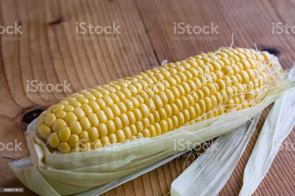 ripe sweet corn stock photo