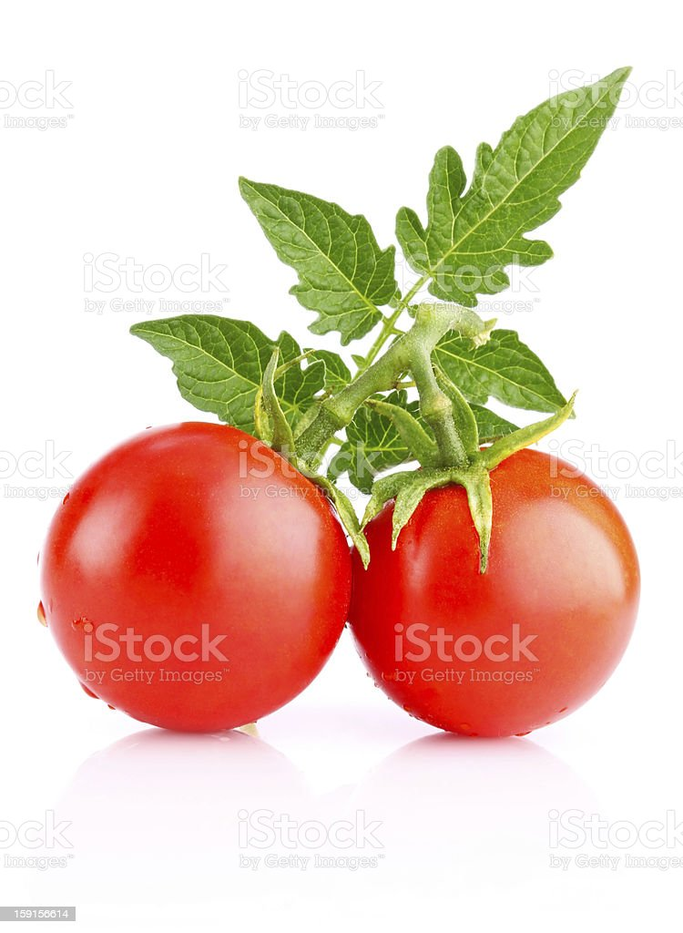 ripe tomatos with leaf royalty-free stock photo